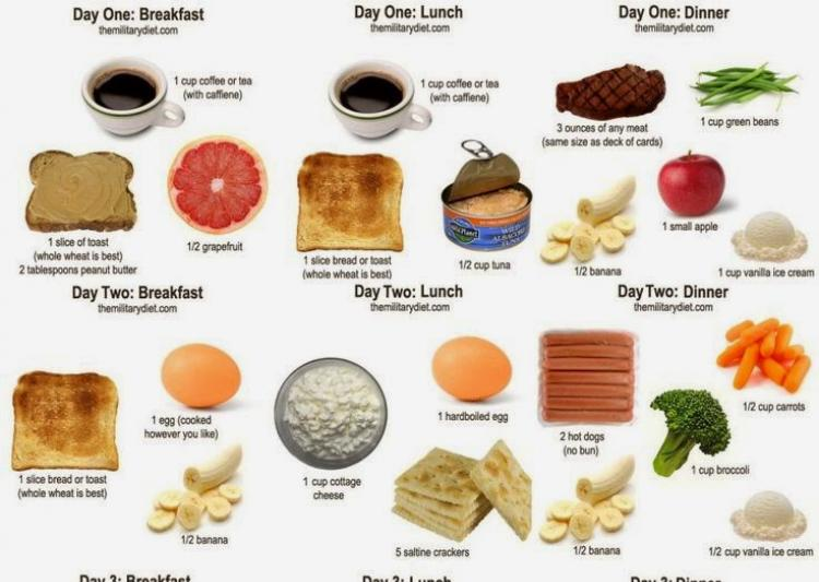 army diet to lose weight photo - 1
