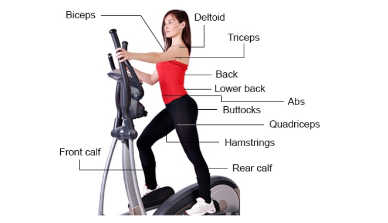 best workout machine to lose weight photo - 1