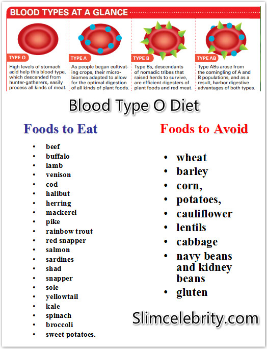 blood type o diet food list to lose weight photo - 1