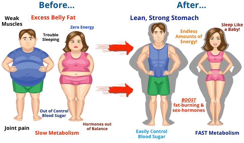 do probiotics make you lose weight photo - 1