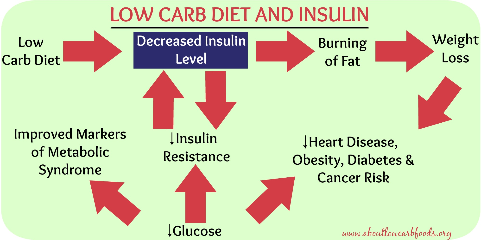 how to lose weight with insulin resistance photo - 1