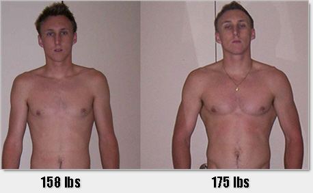 lose weight or gain muscle first photo - 1