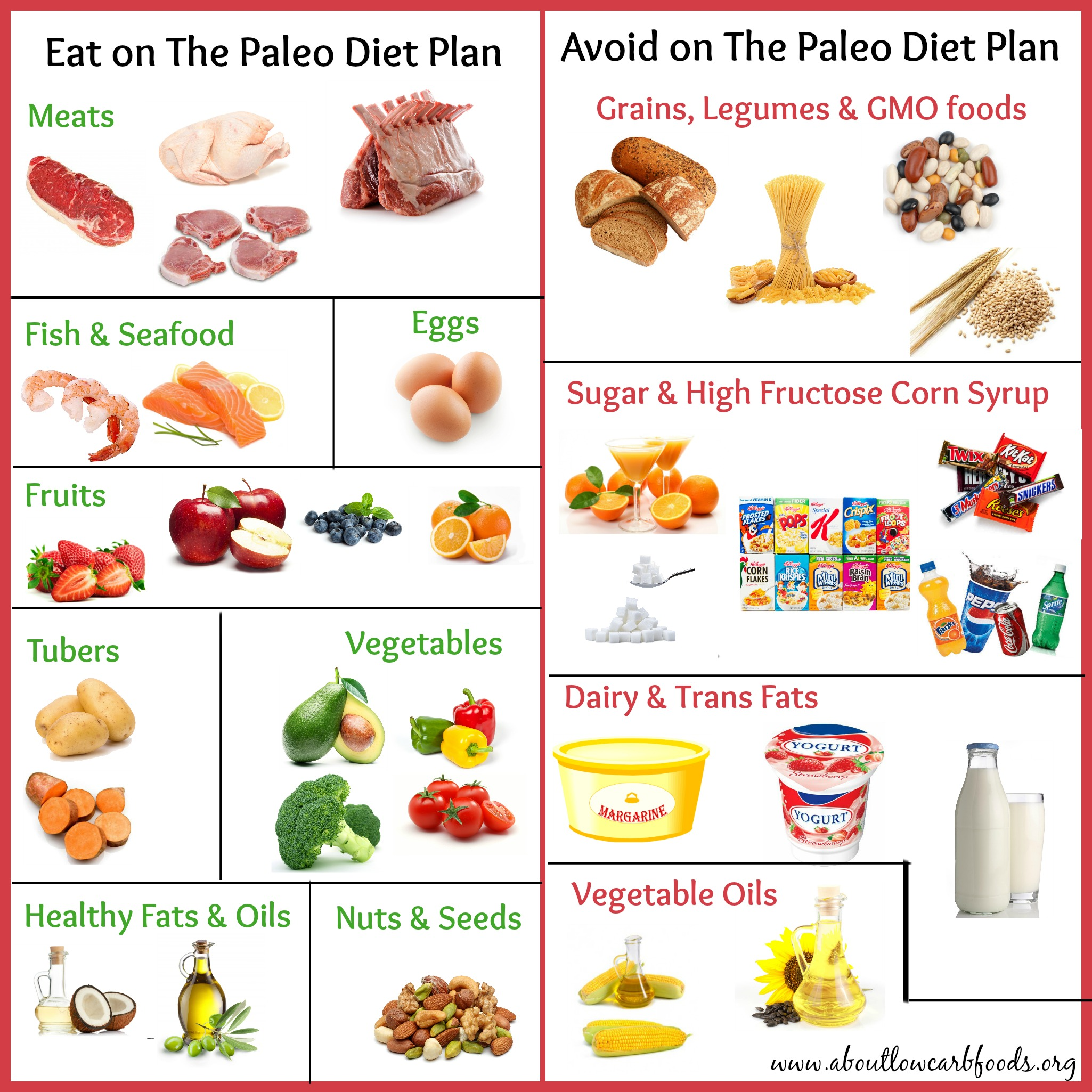 what to eat on paleo diet to lose weight photo - 1